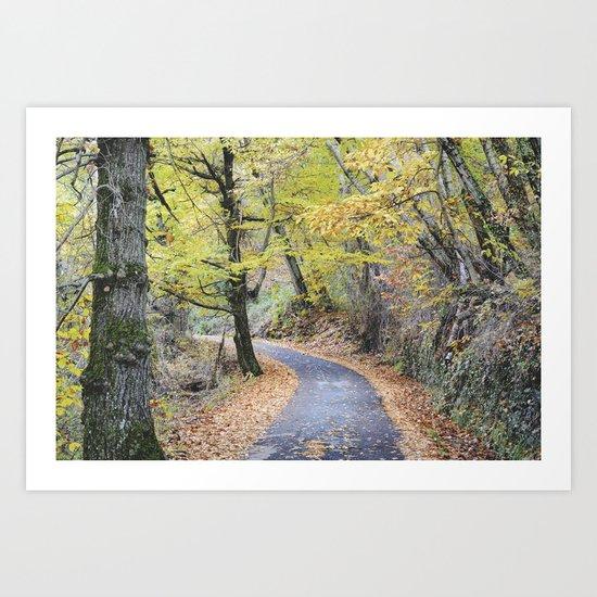 Into the autumn woods Art Print