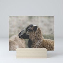 Barbados Blackbelly Sheep Profile Mini Art Print