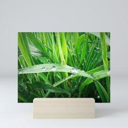 green grass Mini Art Print