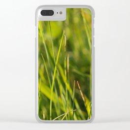 Campanula trachelium Clear iPhone Case