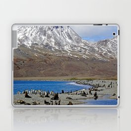 Fur Seals, King Penguins and Snowy Mountains Laptop & iPad Skin
