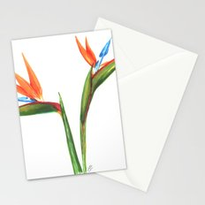 Bird of paradise flowers Stationery Cards