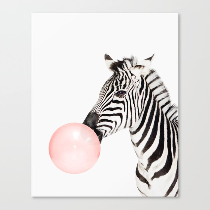 Funny zebra with pink bubble gum canvas print