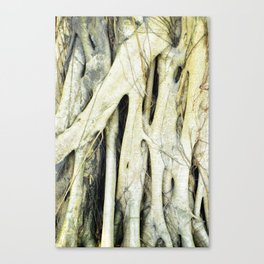 Kowloon Roots Canvas Print