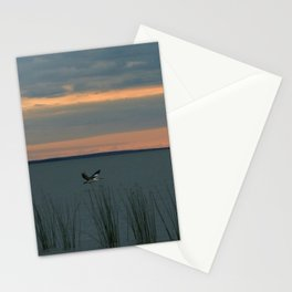 A Pelican Stationery Cards