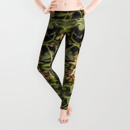 Hold On To What We've Got Leggings