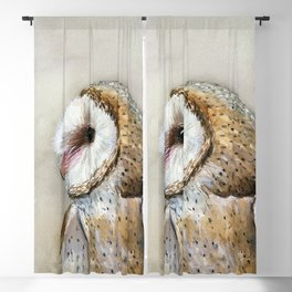 Barn Owl Watercolor, Birds Of Prey Wild Animals Owls Blackout Curtain