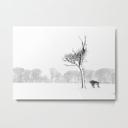 Winter Blizzard Metal Print