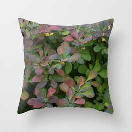 Japanese Barberry Leaves Throw Pillow