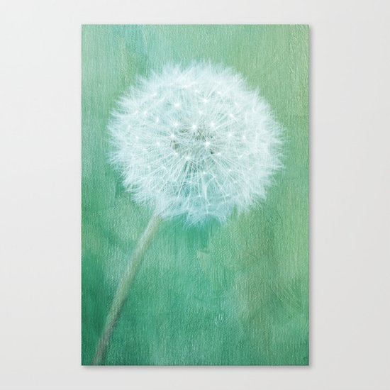 Groundsel Canvas Print