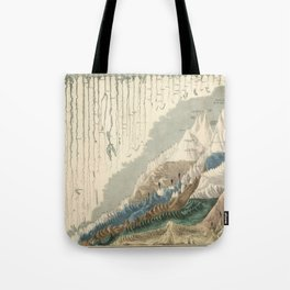 1854 Comparative Lengths of Rivers and Heights of Mountains Tote Bag