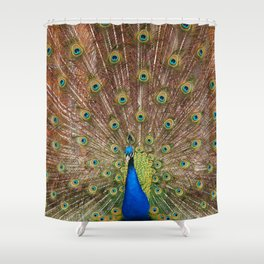 ... he is one of the four. Shower Curtain