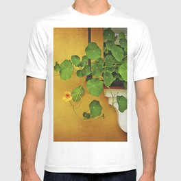 Window Box T-shirt