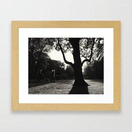 Evening in Park Framed Art Print