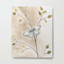Moth on Branch Metal Print