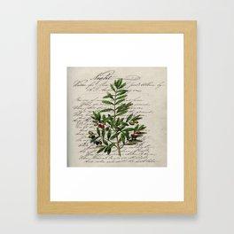 Chic paris scripts kitchen artwork french botanical leaf olive Framed Art Print