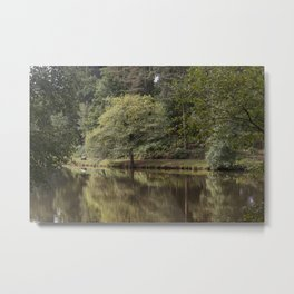 Summer Reflections - 2 Metal Print