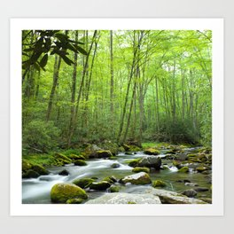 Spring Forest Stream Art Print