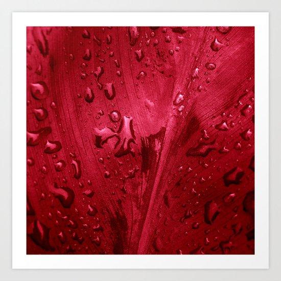 red passion II Art Print