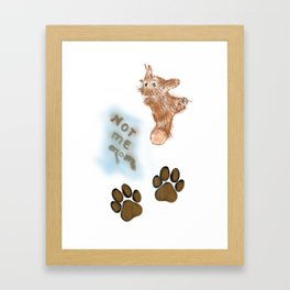 Dog Paws ID Framed Art Print