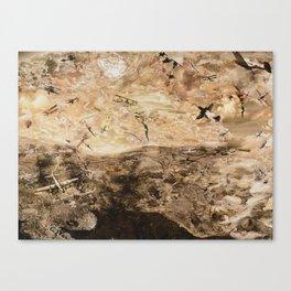 Air Battles Canvas Print