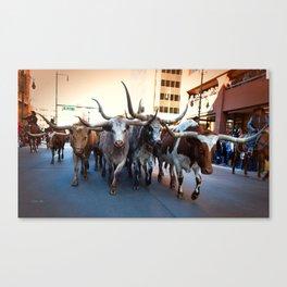 Denver National Western Stock Show Kick-of Parade 2018 Canvas Print