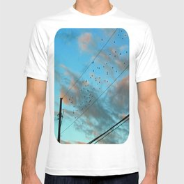 Migration T-shirt
