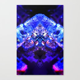 rorscach palais royal brussels belgium ice magic symmetry rorschach caleidoscope 10 Canvas Print