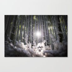 Arashiyama Bamboo in Winter Canvas Print