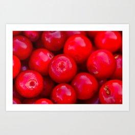 lingonberry berry pattern Art Print