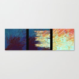 upwelling Canvas Print