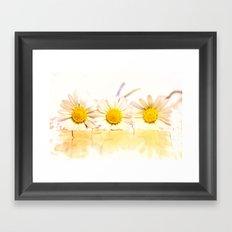 Sunny daisies Framed Art Print