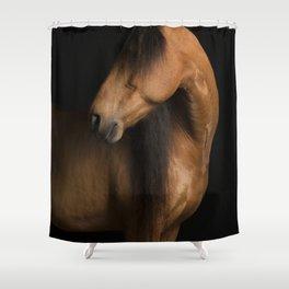 Horse Fine Art Shower Curtain