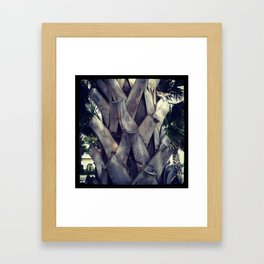 Texan Palm Tree Framed Art Print