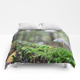 Macro World Comforters