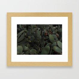 Nopal Framed Art Print
