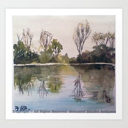 Nature reflection Art Print