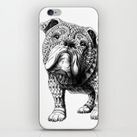english bulldog iPhone & iPod Skins featuring English Bulldog by BIOWORKZ