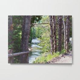 Along the River Metal Print