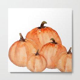Orange pumpkin patch Metal Print