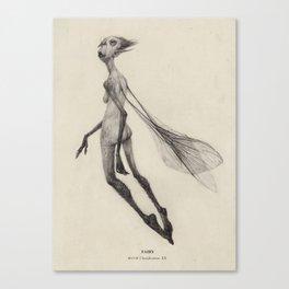 Fairy (3)  Canvas Print