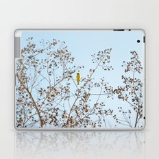 little yellow bird Laptop & iPad Skin