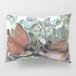 Key-west Dove - John James Audubon Pillow Sham
