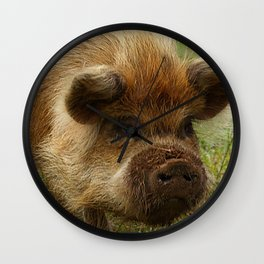 March of the Ginger Pig Wall Clock