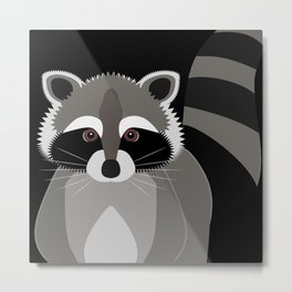 Raccoon in the Night Metal Print