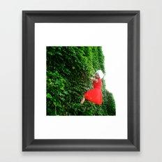 Cat Climbs Framed Art Print
