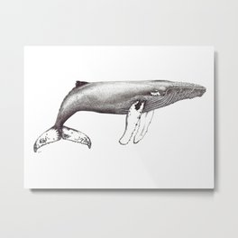 Humpback whale black and white ink ocean decor Metal Print