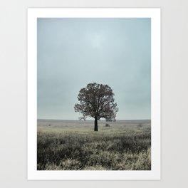 Still Alone Art Print