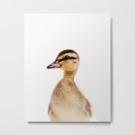 Baby Duckling, Baby Animals Art Print By Synplus Metal Print