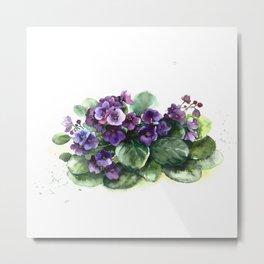 Senpolia viola violet flowers watercolor Metal Print